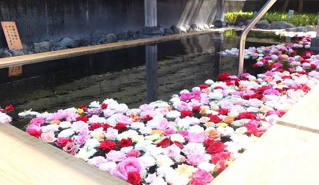 薔薇湯の予定が…( *´艸`)