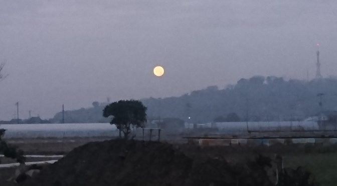 朝の満月。✨