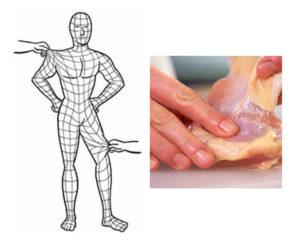 筋膜ってこんなイメージです